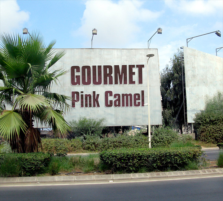 The cover of Gourmet's single Pink Camel.